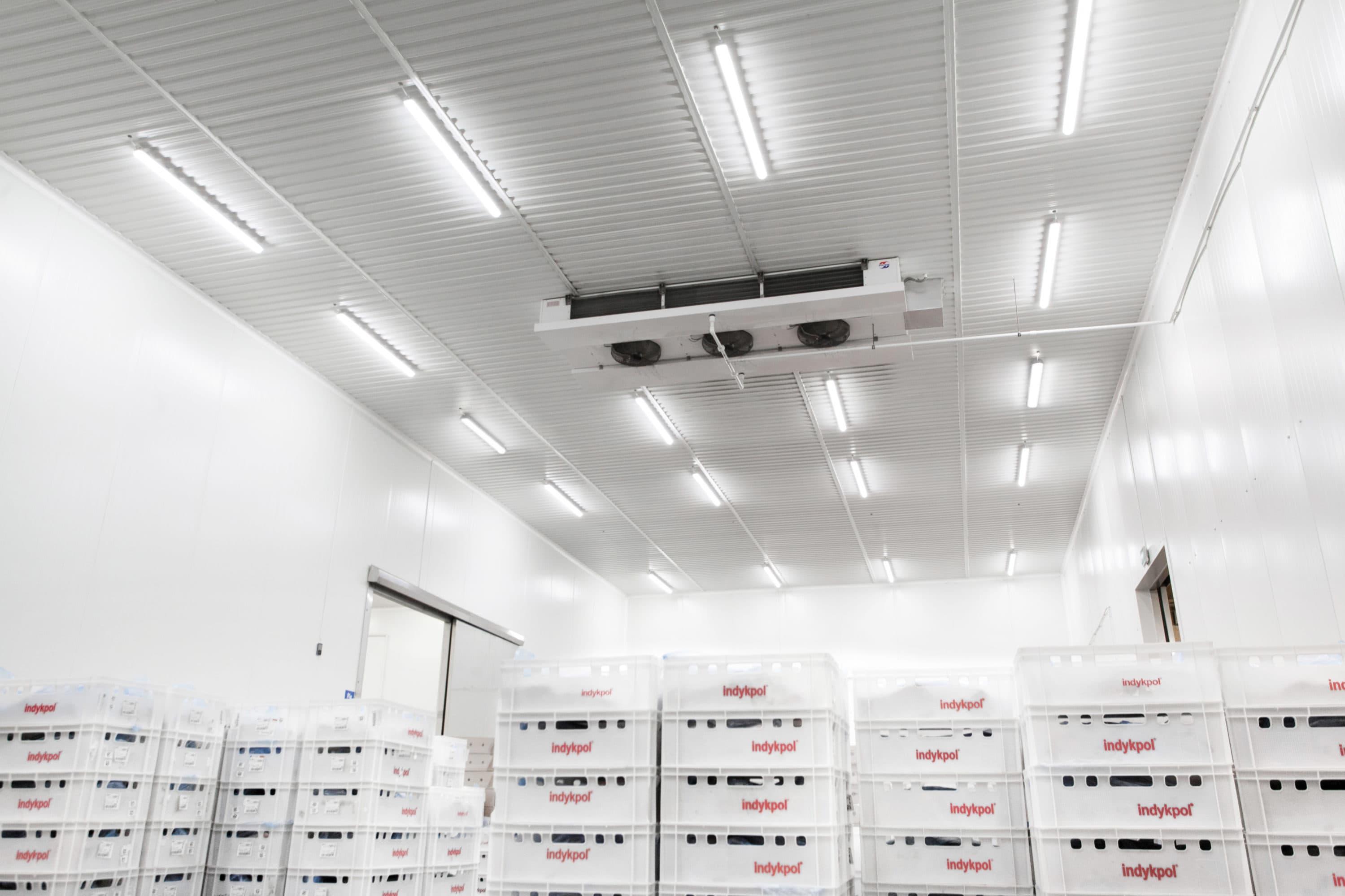 Modernisierung der Beleuchtung in der Firma Indykpol
