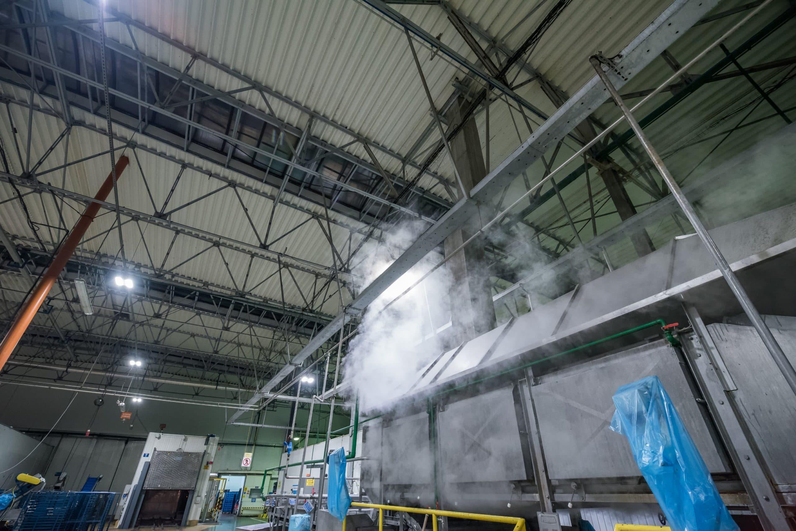 Oprawy przemysłowe Highbay u producenta mrożonek Hortex - Luxon LED